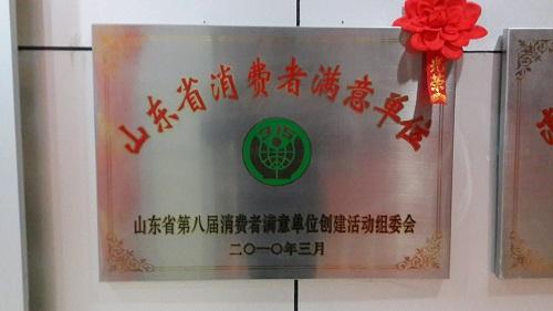 东方电器获山东省第八届最佳单位